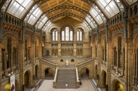 El impresionante hall del Museo de Historia Natural