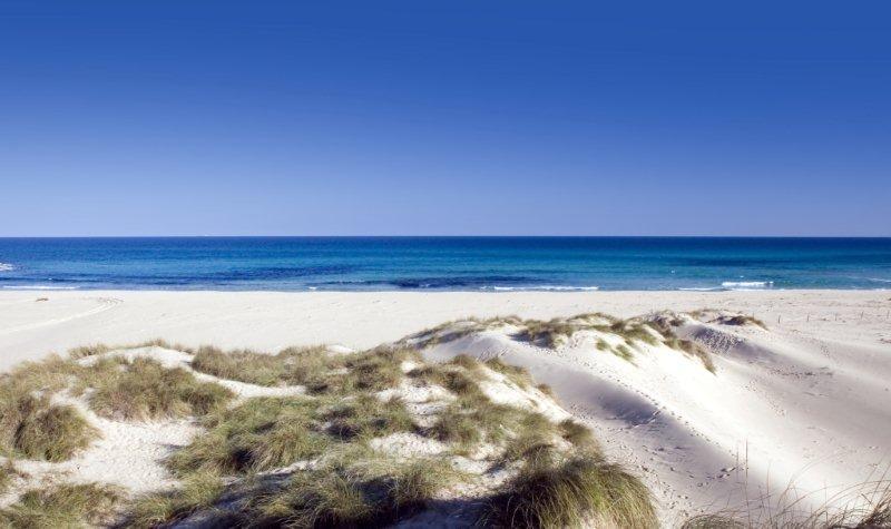 Cala Mesquida - Calas de Mallorca