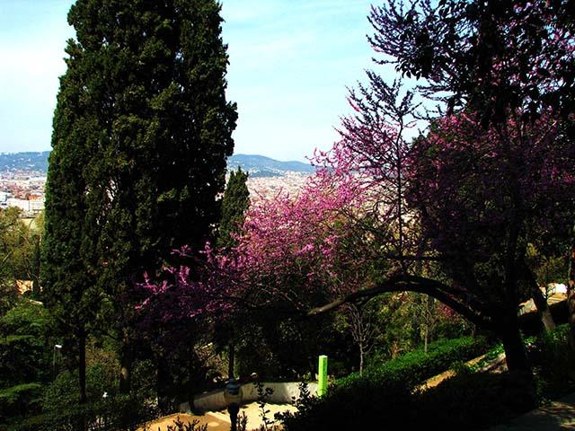 Montju c un refugio cultural y natural en barcelona for Jardines laribal