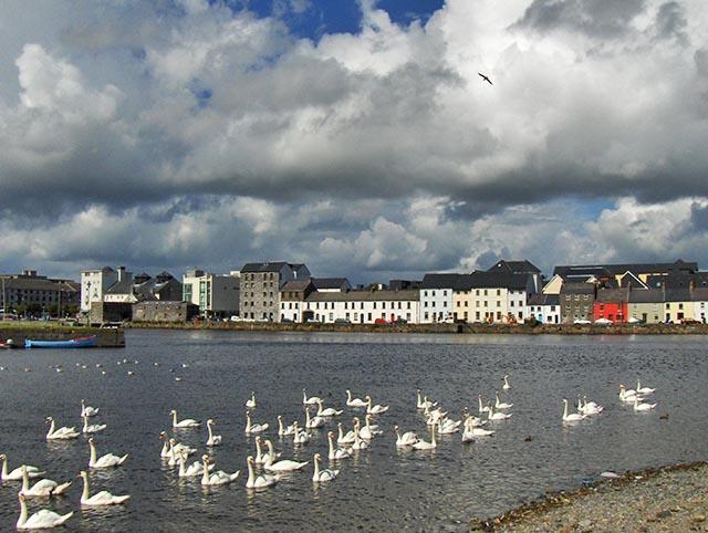 Galway - El puerto