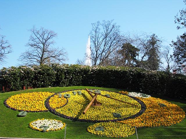 GINEBRA  El reloj floral